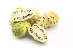 Morinda citrifolia or noni Royalty Free Stock Image