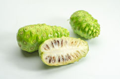 Morinda. On a White Background royalty free stock image