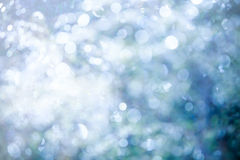Moring dew on leaves blurred vintage background Royalty Free Stock Photography