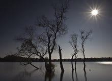 Moring lake at Huay Tueng Tao. Morning lake in Chiang Mai, Thailand Royalty Free Stock Image
