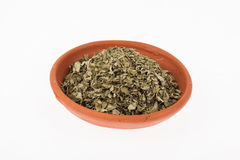 Moringa ξηρό ιατρικό φυτό φύλλων Στοκ Εικόνες