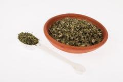 Moringa ξηρό ιατρικό φυτό φύλλων Στοκ φωτογραφία με δικαίωμα ελεύθερης χρήσης