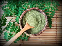 Moringa σκόνη φύλλων στοκ εικόνες με δικαίωμα ελεύθερης χρήσης