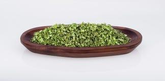 Moringa Stockbild