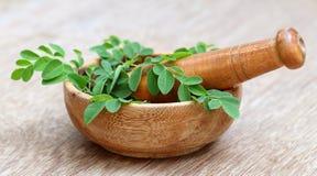 Moringa-Blätter und Mörserstampfe Lizenzfreie Stockfotos