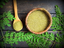 Moringa bladpoeder stock afbeeldingen