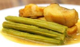Moringa curry med fisken Royaltyfria Foton