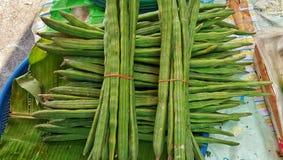 Moringa fröskidor i marknad Royaltyfri Bild