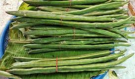 Moringa fröskidor i marknad Arkivbild