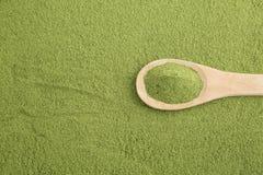 Moringa powder - Moringa oleifera stock images