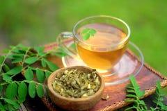 Moringa herbal tea stock photos