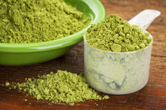 Moringa leaf powder Royalty Free Stock Images
