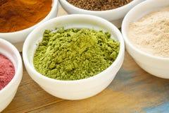 Moringa leaf powder Stock Images