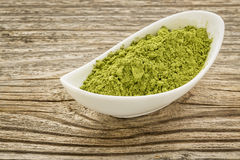 Moringa leaf powder Royalty Free Stock Photography