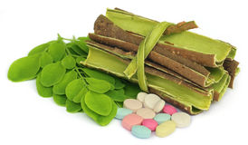 Moringa leaves and bark with pills Stock Images