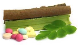 Moringa leaves and bark with pills Stock Photos