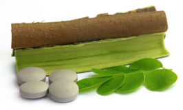 Moringa leaves and bark with pills Royalty Free Stock Photography