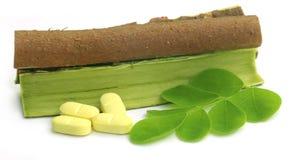 Moringa leaves and bark with pills Royalty Free Stock Image