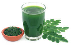 Moringa leaves with extract in a glass Stock Image