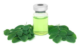Moringa leaves with medicine in vial Royalty Free Stock Photography
