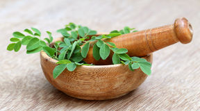 Moringa leaves and mortar pestle Royalty Free Stock Photos