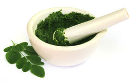 Moringa leaves with mortar and pestle Stock Photos