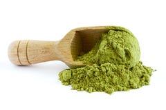 Moringa oleifera σκόνη Στοκ Φωτογραφίες