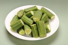 Moringa oleifera Royalty Free Stock Image
