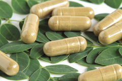 Moringa oleifera capsule with green leaves Royalty Free Stock Photo
