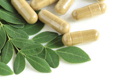 Moringa oleifera capsule with green leaves Stock Photos