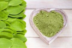 Moringa oleifera royalty free stock photos