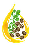Moringa.oleiferaschmieröl. Stilisiert Tropfen. stock abbildung