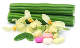 Moringa pills with flower and leaves Royalty Free Stock Photo