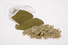 Moringa poeder in capsules Royalty-vrije Stock Afbeeldingen