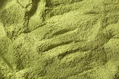 Moringa-Pulver - Heilpflanze Abbildung auf farbenreichem Hintergrund Stockbilder