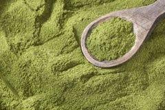 Moringa-Pulver - Heilpflanze Abbildung auf farbenreichem Hintergrund Stockfoto