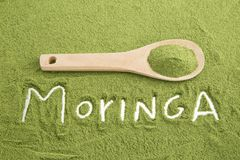 Moringa-Pulver - Moringa.oleifera stockbild