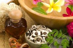 Moringa Soap mix Honey. From natural raw materials Royalty Free Stock Photography