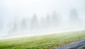 Morining green grass field in Oberammergau Stock Photos
