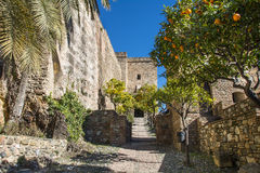 Morisk slott i Malaga Spanien Royaltyfri Foto