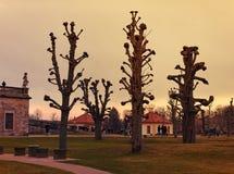 Moritzburg parkerar i aftonljuset royaltyfria foton