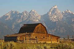 Mormon Row Barn Royalty Free Stock Photo