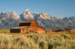 Mormon Row Barn Royalty Free Stock Image