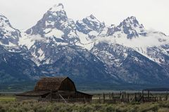 Mormon Row Grand Teton National PArk royalty free stock images