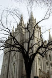 Mormon temple Stock Photography