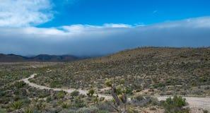 Mormonen-wohle Straße in Nevada stockbild