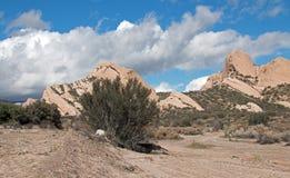 Mormonet vaggar framme av ökenwash i Kalifornien den höga öknen precis förutom San Bernardino Fotografering för Bildbyråer
