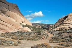 Mormonet vaggar framme av ökenwash i Kalifornien den höga öknen precis förutom San Bernardino Arkivbild
