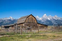 Mormonrad, storslagen Teton nationalpark, Wyoming, USA Arkivfoto