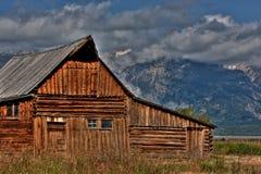 Mormonrad Teton Arkivfoto
